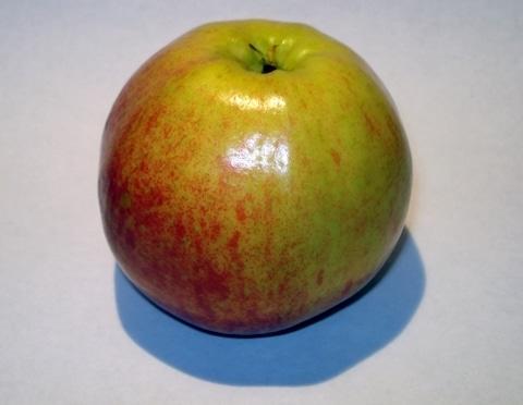Apfel - Obst ist gesund